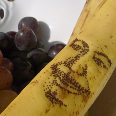 banaanaup2.jpg